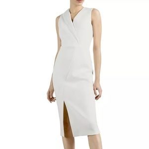 Ted Baker Sheath Dress
